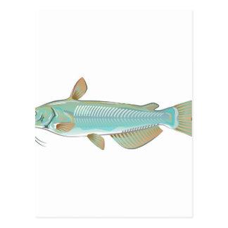 チャネルナマズの釣魚の農場の魚のシーフードの市場 ポストカード