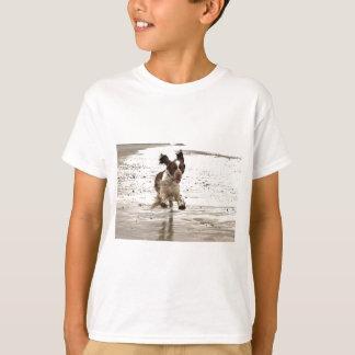 チャーリースプリンガー Tシャツ