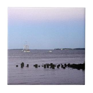 チャールストン湾 タイル