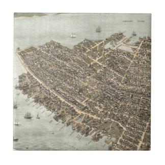 チャールストン(1872年)のヴィンテージの絵解き地図 タイル