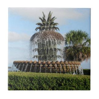 チャールストンSCのパイナップル噴水のタイル タイル