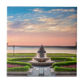 チャールストンSCのパイナップル噴水の日の出 タイル