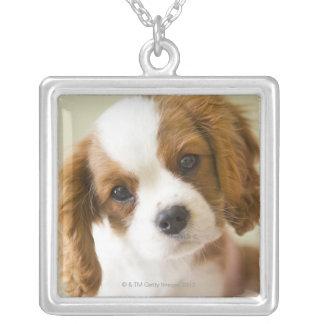 チャールズ王スパニエル犬の子犬のポートレート シルバープレートネックレス