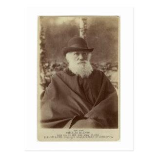 チャールズ・ダーウィン、1881年11月29日の写真 ポストカード