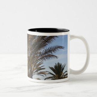チュニジア、サハラ砂漠の砂漠、Douzの素晴らしい砂丘、やし ツートーンマグカップ