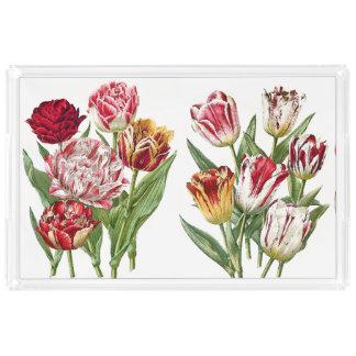 チューリップによっては花の庭の皿が開花します アクリルトレー