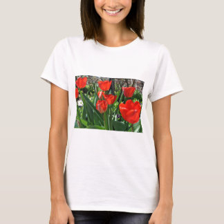 チューリップの夏 Tシャツ