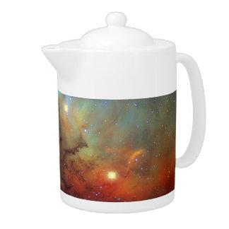 チューリップの星雲SH2-101 NASA