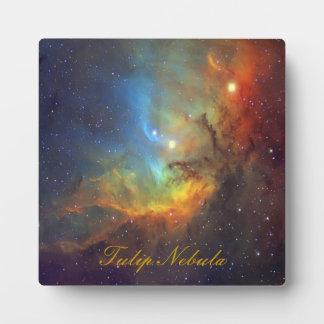 チューリップの星雲SH2-101 NASA フォトプラーク