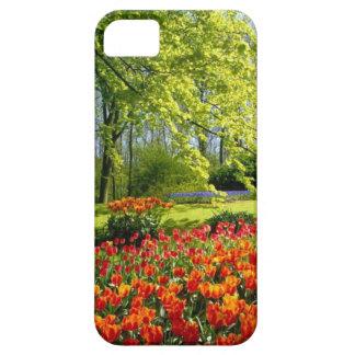 チューリップの時間、Keukenhofの庭 iPhone SE/5/5s ケース