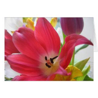 チューリップの花 グリーティングカード