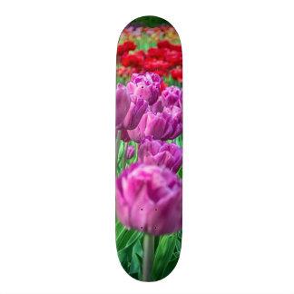 チューリップ分野 スケートボード