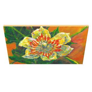 チューリップ木の花 キャンバスプリント