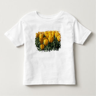 チューリップ3 トドラーTシャツ