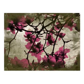 チョコレートラズベリーの花の枝郵便はがき ポストカード