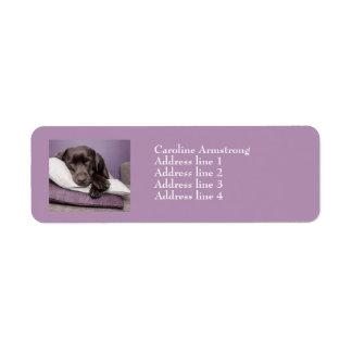 チョコレートラブラドル犬のカスタムの住所シール ラベル
