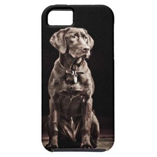 チョコレートラブラドル・レトリーバー犬 iPhone SE/5/5s ケース
