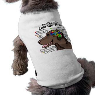 チョコレートラブラドールの頭脳の地図書 ペット服