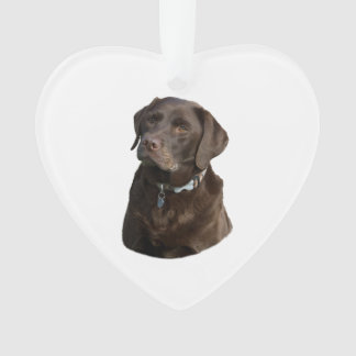 チョコレートラブラドール犬の写真のポートレート オーナメント