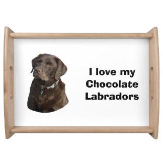 チョコレートラブラドール犬の写真のポートレート トレー