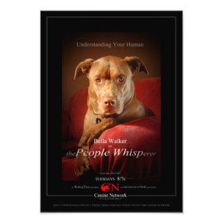 チョコレート実験室ピットの組合せ犬の映画のポスター フォトプリント