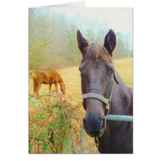 チョコレート色の馬 カード