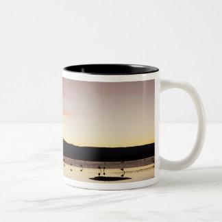 チリのフラミンゴ ツートーンマグカップ