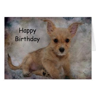 チワワかヨークシャーテリアの子犬 カード