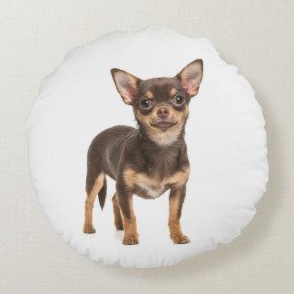 チワワの子犬の枕 ラウンドクッション