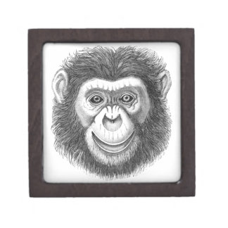 チンパンジーのギフト用の箱 ギフトボックス