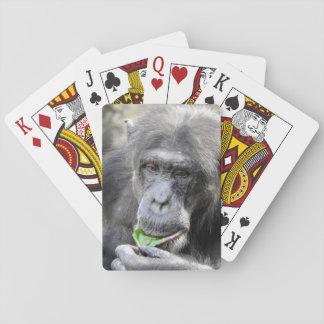 チンパンジーのトランプ トランプ