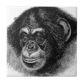 チンパンジーのヘッド芸術 タイル