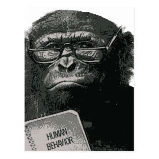 チンパンジーの読書 ポストカード