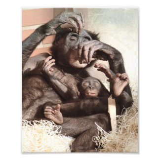 チンパンジー フォトプリント