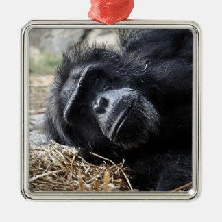 チンパンジー メタルオーナメント