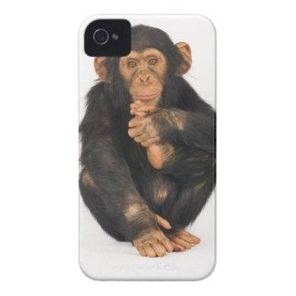 チンパンジー(鍋のtroglodytes)。 若いplayfull Case-Mate iPhone 4 ケース