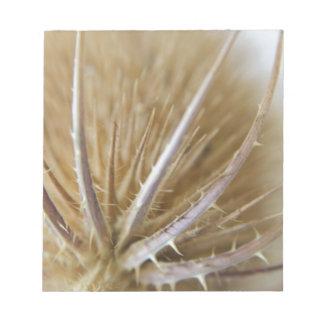 チーズルの自然の写真 ノートパッド
