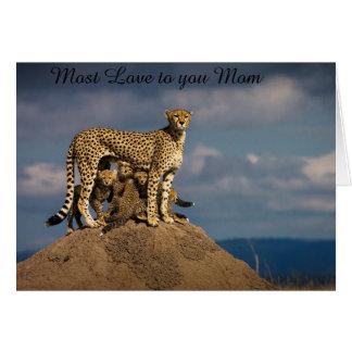 チータおよびカブスあなたへのほとんどの愛お母さん カード