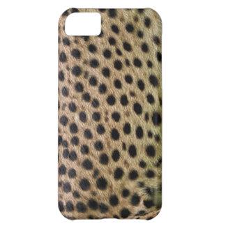 チータによって斑点を付けられる模造のな毛皮、野性生物の写真サンプル iPhone5Cケース
