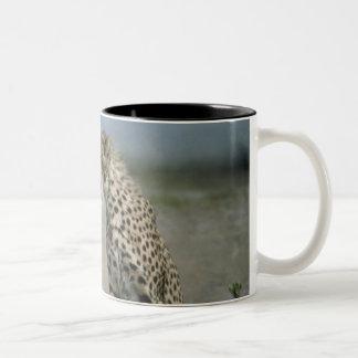 チータのマグ ツートーンマグカップ