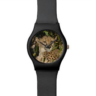 チータの写真 腕時計