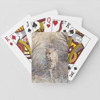チータの狩りの前部イメージのトランプ トランプ