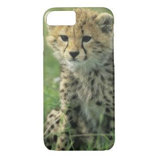 チータ、(Acinonyxのjubatus)、タンザニア、Serengeti iPhone 8/7ケース