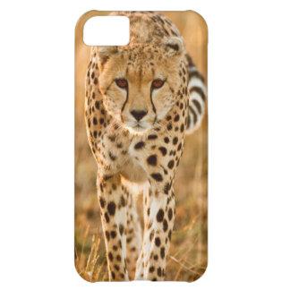 チータ(Acinonyx Jubatus)のポートレート、Maasai iPhone5Cケース