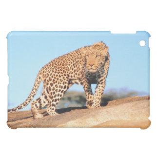 チータ iPad MINI カバー