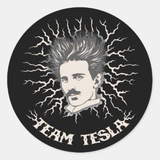 チームTeslaの空電の毛 ラウンドシール