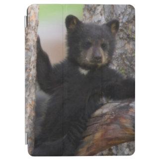 ツキノワグマのカブスのLounging iPad Air カバー