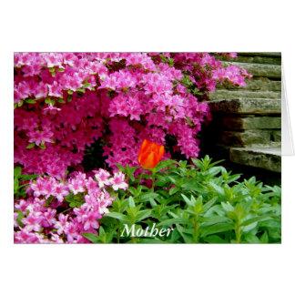 ツツジおよびチューリップ(エヴァリンの花のコレクション) カード