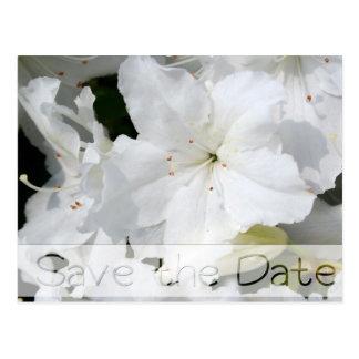 ツツジの花の結婚式の保存日付の郵便はがき3 ポストカード