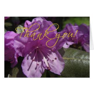 ツツジの花カードありがとう カード